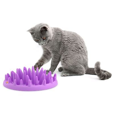 Interactive Cat Feeder
