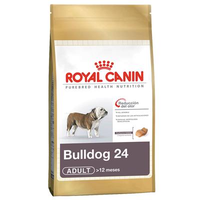 Bulldog Inglés 24 Adulto 12 Kg
