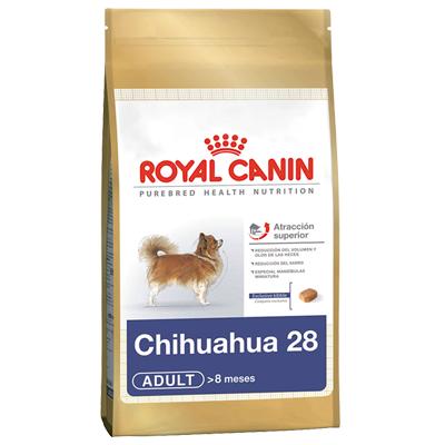 Chihuahua 28 1 Kg
