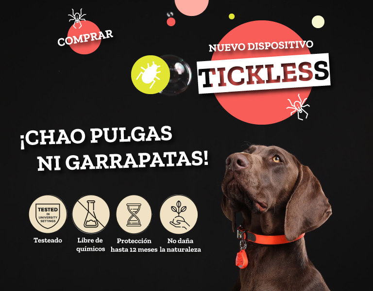 tickless-movil-FINAL